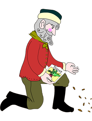 Grandfather plants some turnip seeds